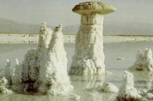 Lot's wife turned into a pillar of salt like these ones on the Dead Sea